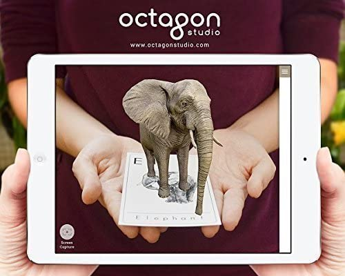 Octagon Studio Animal 4D+ Augmented Reality Flashcards