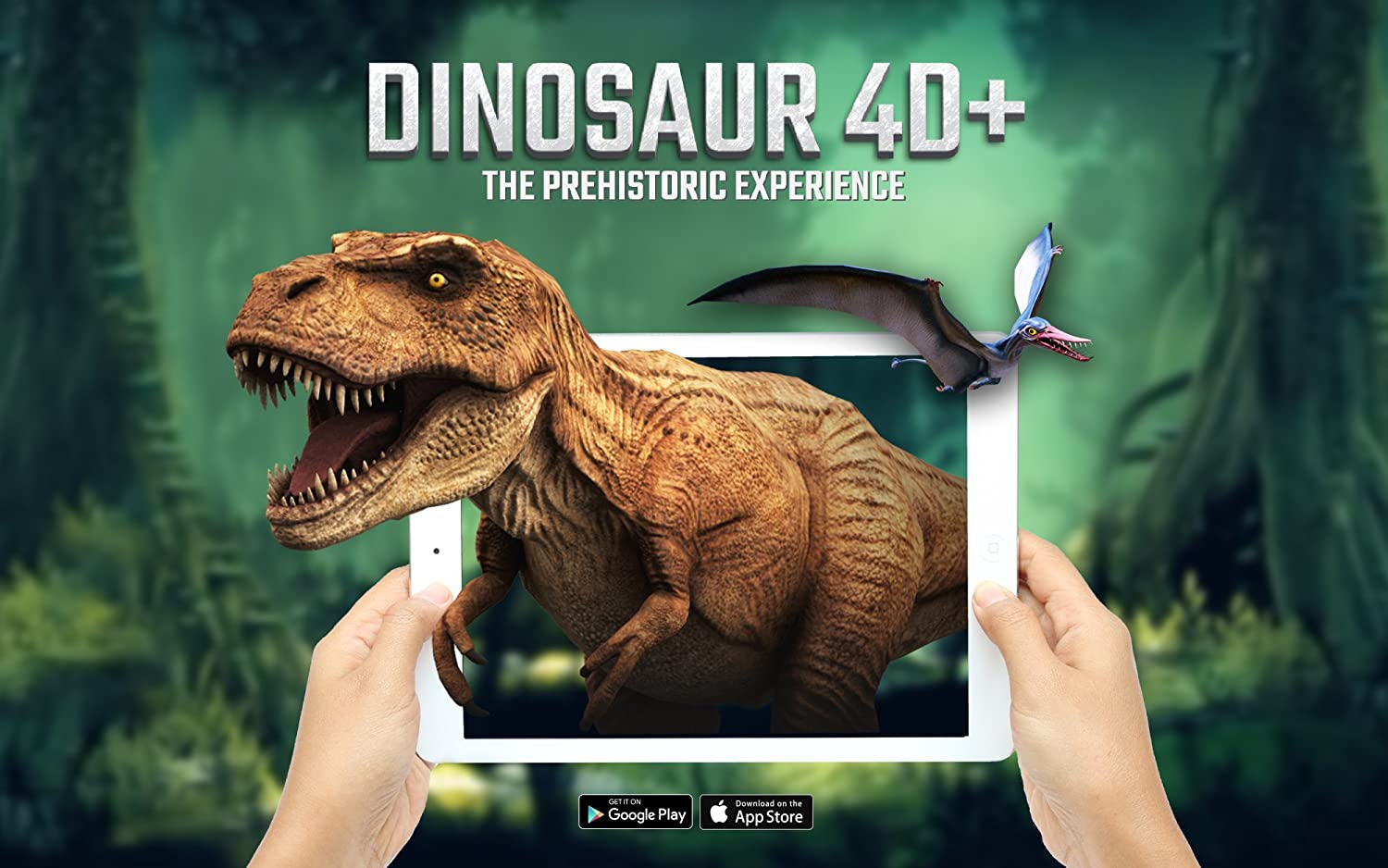 Octagon Studio Dinosaur 4 D+ Flashcards
